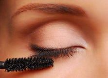 βούρτσα eyelashes Στοκ Εικόνες