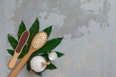 Βούρτσες μπαμπού επεξεργασίας σώματος SPA με την πετσέτα, το άλας και την κρέμα λουτρών στο πράσινο τροπικό υπόβαθρο φύλλων στοκ φωτογραφίες