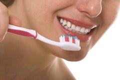 βούρτσισμα των δοντιών Στοκ Εικόνες