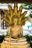 Βούδας με το φίδι εννέα κεφαλιών Στοκ φωτογραφίες με δικαίωμα ελεύθερης χρήσης