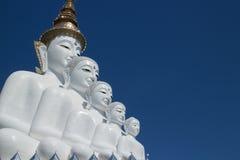 Βούδας πέντε Στοκ εικόνες με δικαίωμα ελεύθερης χρήσης