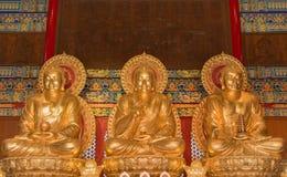 Βούδας στην αίθουσα για τη λατρεία Στοκ φωτογραφία με δικαίωμα ελεύθερης χρήσης