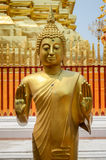 Βούδας στην Ταϊλάνδη Στοκ Εικόνα