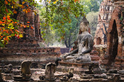 Βούδας στο ayutthaya Στοκ εικόνα με δικαίωμα ελεύθερης χρήσης