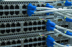 Βούλωμα καλωδίων του τοπικού LAN utp στο διακόπτη δικτύων Στοκ φωτογραφία με δικαίωμα ελεύθερης χρήσης