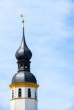 Βολβοειδής κώνος Στοκ Φωτογραφίες