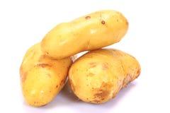 Βολβός καινούριων πατατών Στοκ εικόνα με δικαίωμα ελεύθερης χρήσης