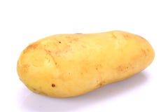 Βολβός καινούριων πατατών Στοκ Εικόνες