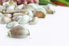 Βολβός σκόρδου στο άσπρο υπόβαθρο στοκ φωτογραφία