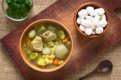 Βολιβιανή σούπα αποκαλούμενη Chairo de Tunta Στοκ φωτογραφία με δικαίωμα ελεύθερης χρήσης