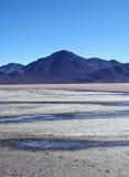 βολιβιανό τοπίο Στοκ Εικόνες