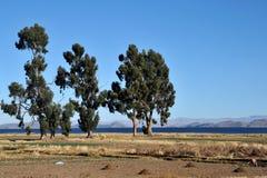 Βολιβιανό χωριό στις ακτές της λίμνης Titicaca Στοκ εικόνες με δικαίωμα ελεύθερης χρήσης