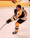 Βράγχιο Hal, Boston Bruins Στοκ Εικόνα