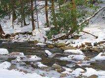 Βράζοντας κολπίσκος το χειμώνα Στοκ φωτογραφία με δικαίωμα ελεύθερης χρήσης