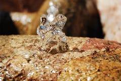βράζοντας ύδωρ βράχου Στοκ Φωτογραφία