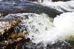 βράζοντας ύδωρ Στοκ Εικόνες