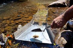 Βράση για το χρυσό με ένα κιβώτιο φραχτών στοκ φωτογραφία με δικαίωμα ελεύθερης χρήσης