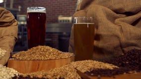 Βράση που βλασταίνεται των μπυρών και των σιταριών λυκίσκου φιλμ μικρού μήκους