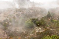 Βράσιμο στον ατμό της επαρχίας Taupo, Νέα Ζηλανδία στοκ φωτογραφία με δικαίωμα ελεύθερης χρήσης