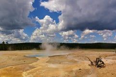 Βράσιμο στον ατμό της θερμικής λίμνης στο εθνικό πάρκο Yellowstone, ΗΠΑ με το νεκρό θάμνο στο πρώτο πλάνο Στοκ Φωτογραφίες