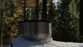Βράσιμο στον ατμό του φλυτζανιού του καυτού τσαγιού ή του καφέ που στέκεται στο χιόνι στο δάσος απόθεμα βίντεο