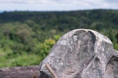 Βράχοι, απότομοι βράχοι, δασικό πράσινο υπόβαθρο Στοκ Φωτογραφίες