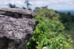 Βράχοι, απότομοι βράχοι, δασικό πράσινο υπόβαθρο Στοκ Φωτογραφία