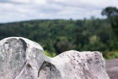 Βράχοι, απότομοι βράχοι, δασικό πράσινο υπόβαθρο Στοκ εικόνα με δικαίωμα ελεύθερης χρήσης