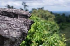 Βράχοι, απότομοι βράχοι, δασικό πράσινο υπόβαθρο Στοκ Εικόνα