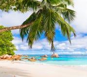 Βράχοι γρανίτη στην παραλία Anse Λάτσιο Οι Σεϋχέλλες Στοκ εικόνα με δικαίωμα ελεύθερης χρήσης