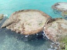 Βράχοι λιμνών Στοκ φωτογραφία με δικαίωμα ελεύθερης χρήσης