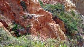 Βράχοι και απότομοι βράχοι Στοκ Φωτογραφίες