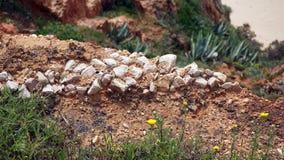 Βράχοι και απότομοι βράχοι Στοκ Εικόνες
