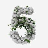 Βράχοι και αλφάβητο 5 κισσών Στοκ Εικόνες