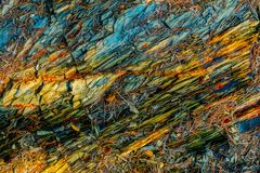 Βράχοι και βελόνες πεύκων στοκ εικόνες με δικαίωμα ελεύθερης χρήσης