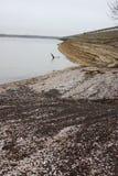 Βράχοι και κοχύλια Στοκ φωτογραφία με δικαίωμα ελεύθερης χρήσης