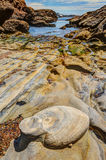 Βράχοι και πέτρες στην ακτή Pacific Coast Στοκ Εικόνα
