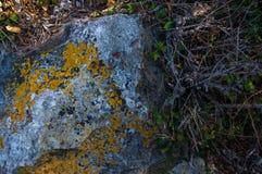 Βράχοι και πέτρες της παραλίας Στοκ Φωτογραφίες