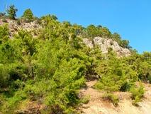 Βράχοι με τα δέντρα στην Τουρκία Στοκ φωτογραφίες με δικαίωμα ελεύθερης χρήσης