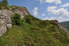 Βράχοι που καλύπτονται με τον ιουνίπερο Στοκ εικόνα με δικαίωμα ελεύθερης χρήσης
