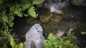 Βράχοι σε ένα ρεύμα στοκ φωτογραφίες με δικαίωμα ελεύθερης χρήσης
