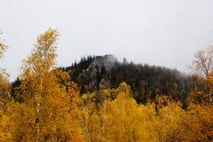 Βράχοι στην ομίχλη Στοκ εικόνες με δικαίωμα ελεύθερης χρήσης