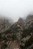 Βράχοι στην ομίχλη Στοκ Εικόνες