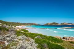 Βράχοι στην παραλία, τυχερός κόλπος, Esperance, δυτική Αυστραλία Στοκ εικόνα με δικαίωμα ελεύθερης χρήσης