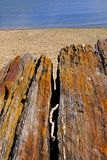 Βράχοι στην παραλία Στοκ Φωτογραφία