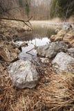 Βράχοι στη λίμνη Alpsee Στοκ εικόνα με δικαίωμα ελεύθερης χρήσης