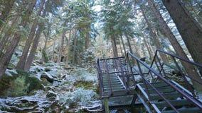 Βράχοι στη διάσημη δύσκολη πόλη των βράχων adrspach-Teplice Χειμώνας Στοκ εικόνες με δικαίωμα ελεύθερης χρήσης
