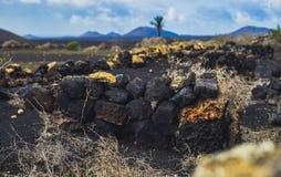 Βράχοι στη ζωηρόχρωμη έρημο Στοκ Εικόνα