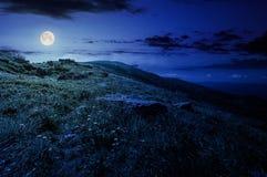 Βράχοι στη χλοώδη βουνοπλαγιά του βουνού τη νύχτα Στοκ Εικόνα