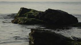 Βράχοι στις παλίρροιες θάλασσας απόθεμα βίντεο